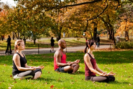 A group of people relaxing with meditation in a city park photo