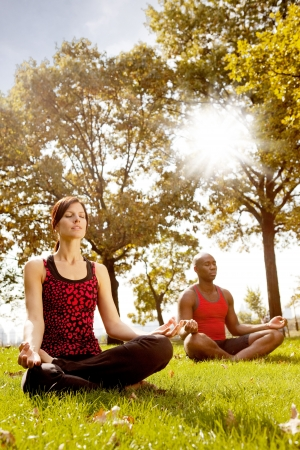 A group of people meditation in the park - taken into the sun with lens flare Stock Photo - 5857693