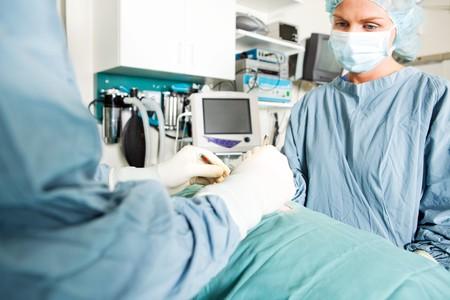 veterinaria: Un cirujano y un asistente de trabajan en un peque�o animal en una cl�nica veterinaria
