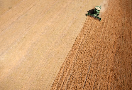 arial views: Background texture aerial of a combine harvesting lentils