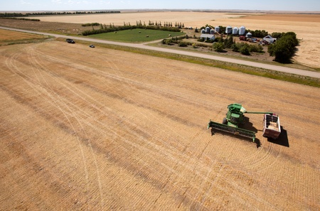 kap: A harvester filling a grain truck with farm yard in background