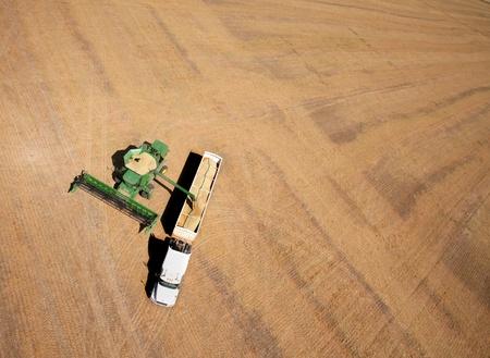 cosechadora: Vista aérea de un campo ser cosechada - un combinado y camión en primer plano
