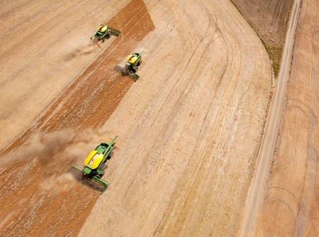 kap: Three harvesters working in a grain field on the prairies. Stock Photo