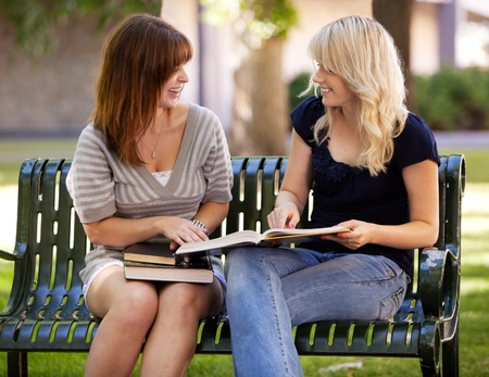 Portrait of two university students studying outdoors on a park bench Stock Photo - 10559763