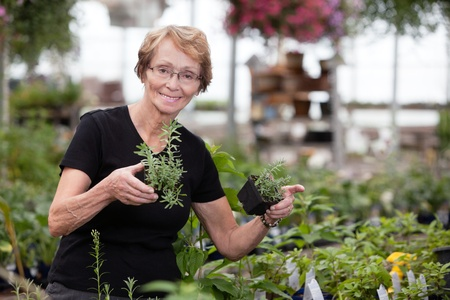 Happy senior woman holding small potted plants photo