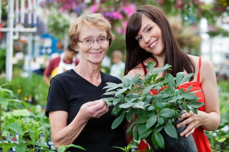 Young woman with her grandmother holding potted plant with people in background photo