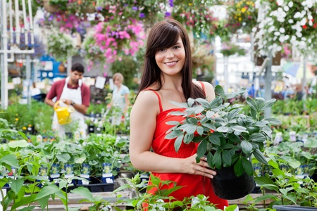 flower shop: Beautiful female customer holding potted plant with workers in background Stock Photo