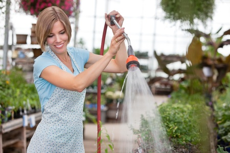 Young attractive woman watering the plants photo