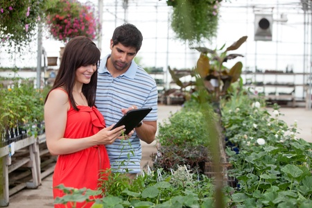 Couple looking at digital tablet in greenhouse photo
