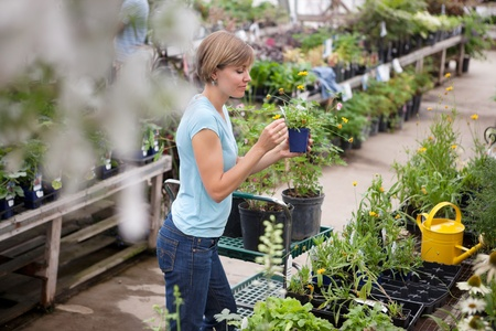 Casual young woman shopping for plants photo