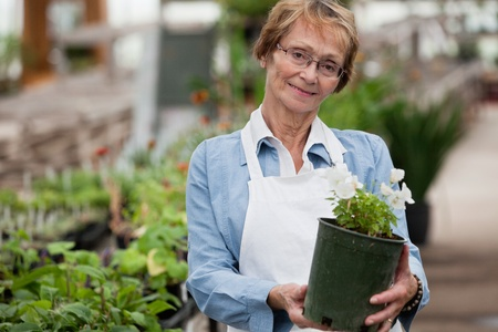 Portrait of smiling senior woman holding potted plant photo