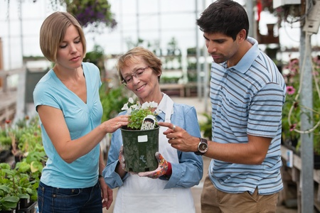 Man and woman shopping for plants photo