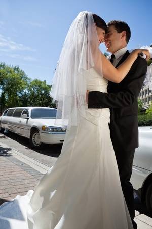 to wed: Affettuoso paio sposi si abbracciano