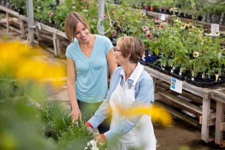 shopping questions: Senior female worker communicating to customer