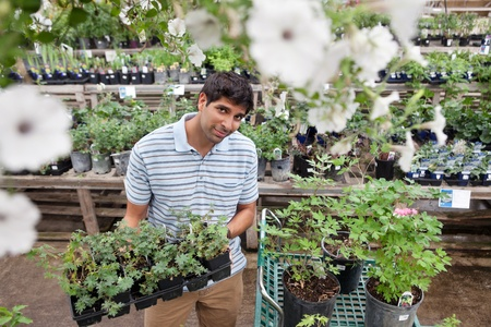 flower nursery: Portrait of young man buying potted plants from garden centre