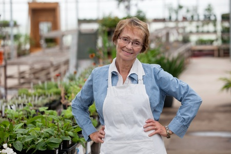 smiling woman in a greenhouse: Portrait of smiling senior female worker standing with hands on hip