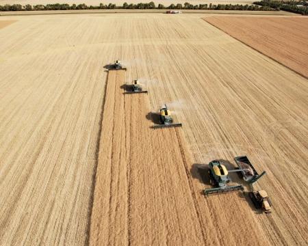 cosechadora: Cuatro recolectores de peinado en un paisaje de la pradera en la formaci�n de