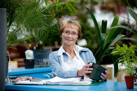 check out: Portrait of a senior woman standing at check out counter in garden center