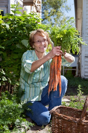 Senior woman holding fresh carrots and smiling Stock Photo - 11048146