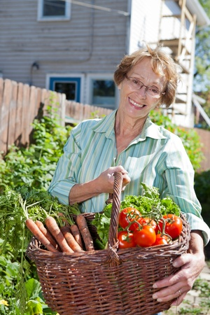 Portrait of beautiful senior woman holding basket filled with vegetables photo