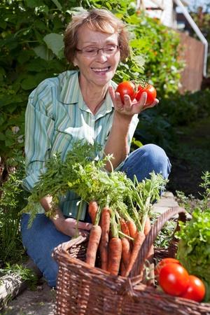 Senior woman in garden picking fresh produce photo