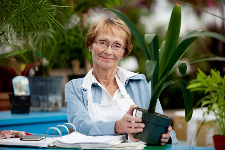 Portrait of a senior woman working in a garden center photo