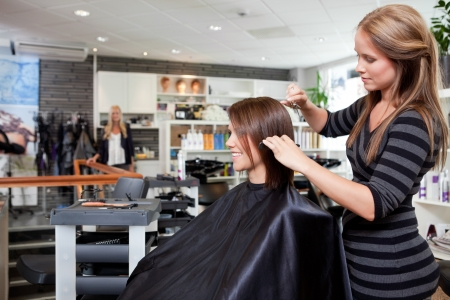 beauty parlour: Hairdresser cutting client s hair in beauty salon