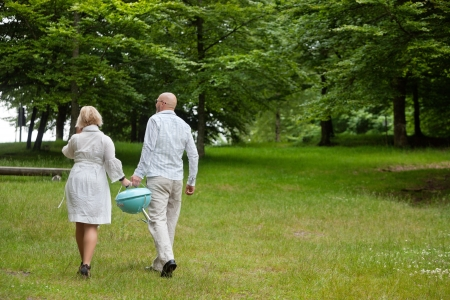 Rear view of a couple in casual clothing walks with a portable barbeque in forest park Stock Photo - 14454745
