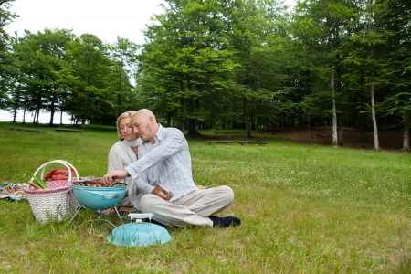 Mature man with woman cooking food on a portable barbecue at an outdoor picnic in forest park Stock Photo - 14454746