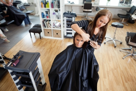 parlor: High angle view of female customer getting hair cut by beautician at parlor