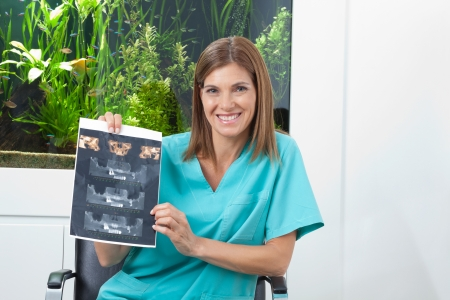 Portrait of a happy female dentist holding dental X-ray in clinic Stock Photo - 15316629