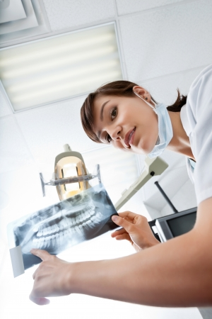 Young Female Dentist Pointing At X-Ray Image photo