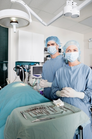 Veterinarian Surgeons In Operating Room Stock Photo - 16672679