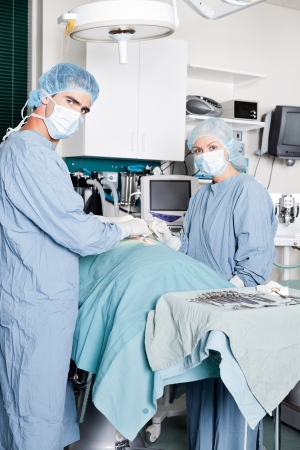 Veterinarian Doctor And Female Assistant Performing A Surgery photo
