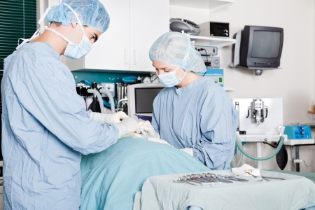 Veterinarian Doctor And Female Assistant Performing A Surgery Stock Photo - 17158926