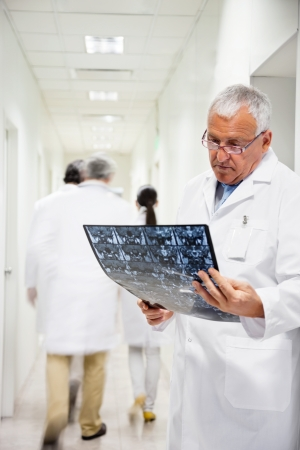 Senior Radiologist Reviewing X-ray Stock Photo - 17239253