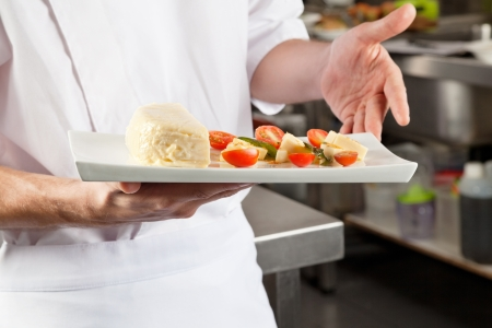 Chef Presenting Dish In Kitchen Stock Photo - 18005892