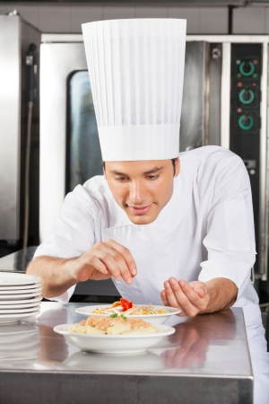 Chef Adding Spices To Dish Stock Photo - 18029449