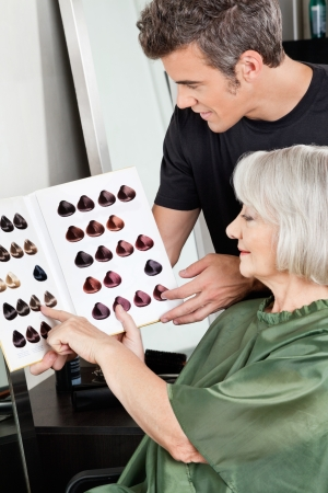 hairdresser parlor: Client And Hairdresser Selecting Hair Color