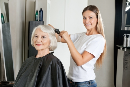 beauty parlor: Hairdresser Ironing Woman s Hair Stock Photo