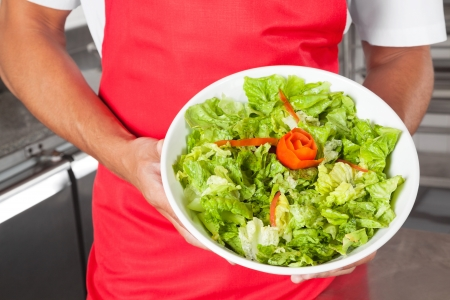 Chef Presenting Salad In Kitchen Stock Photo - 18355898