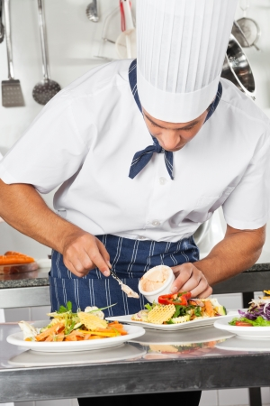 Chef Garnishing Dish With Mayonnaise Stock Photo - 18793395