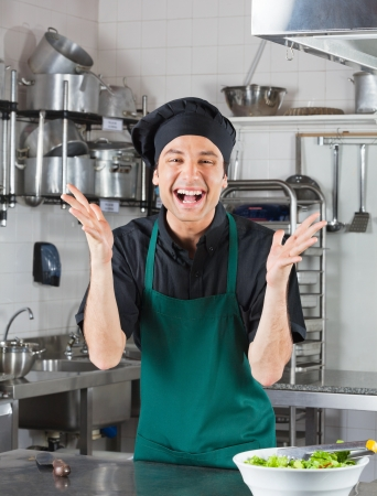 Male Chef Gesturing In Kitchen Stock Photo - 18793400