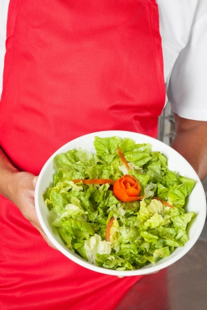 Chef Presenting Salad Stock Photo - 18793423