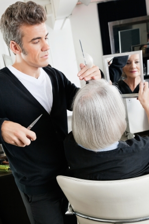 Hairstylist Cutting Hair At Salon Stock Photo - 18793417