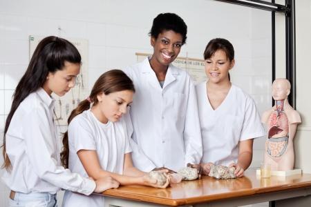 Profesor con los estudiantes Examinar Piedras En El Escritorio photo