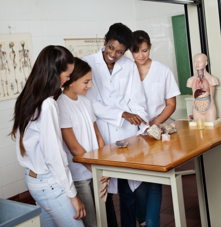 female teacher: Teacher Pointing At Stone While Explaining Schoolgirls In Lab Stock Photo