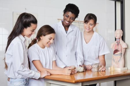 Teenage schoolgirls with female teacher analyzing stones at desk in classroom photo