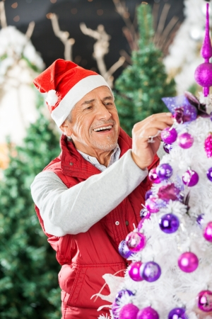 Happy owner in Santa hat decorating Christmas tree at store Stock Photo - 23802421