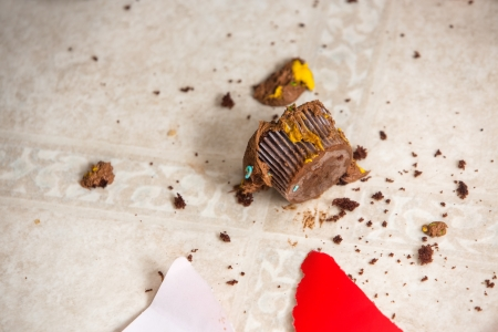 messy house: Cupcake and crumbs on flooring